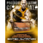 Protected Creatine Concentrate 144 kapsz. Scitec Nutrition